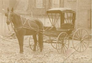 Davis A Sheaffer Horse and Buggy