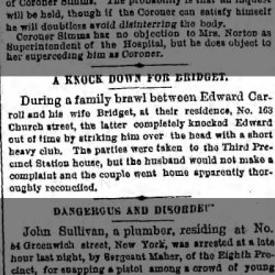 knockdown-for-bridget-the-brooklyn-daily-eagle-25-apr-1877-wed-page-4